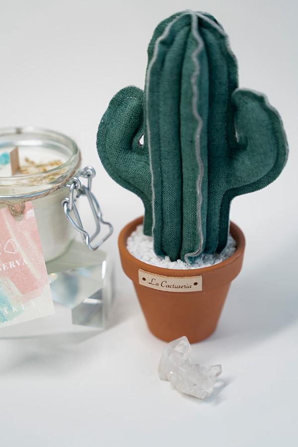 pack-vela-aromatica-cactus-minerva